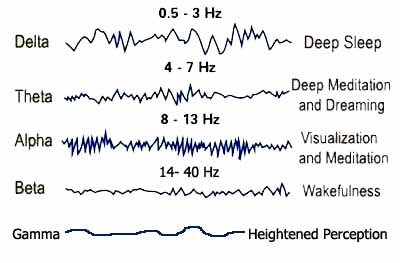 Brainwaves plus Gamma